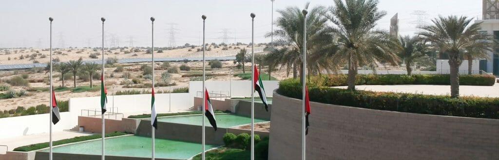 جامعة دبي تحتفل بيوم العلم
